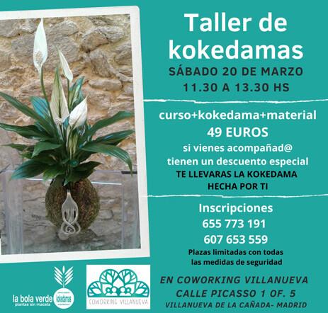 Taller de Kokedamas en Coworking Villanueva
